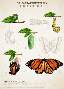 Cartel retro de la mariposa de danainae