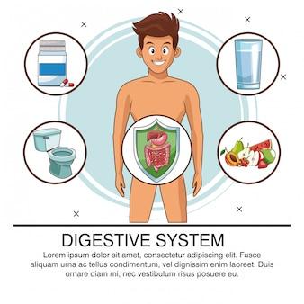 Cartel del sistema digestivo con información