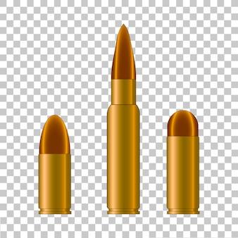 Cartuchera y bala de arma