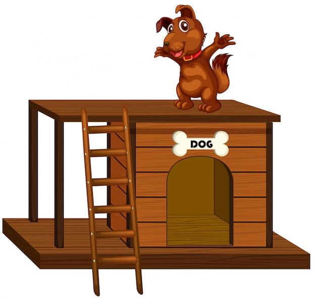 Casa de perro con lindo perro de pie aislado