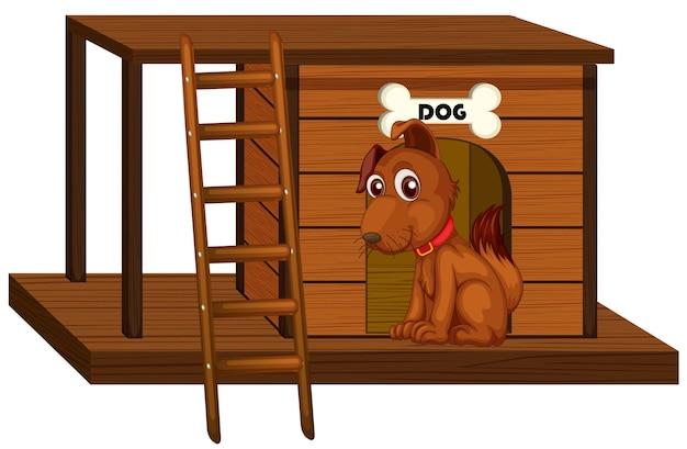 Casa de perro con lindo perro sentado aislado