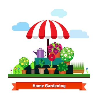 Casa verde tienda con plantas, flores, hierba