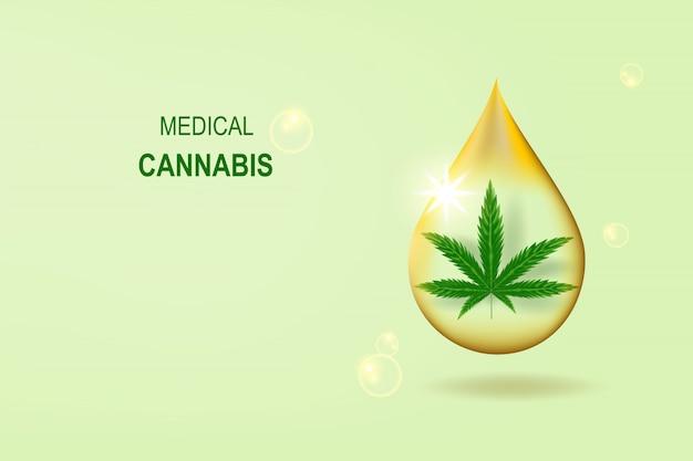 Cbd medicinal aceite de cáñamo planta verde orgánica