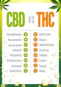 Cbd vs thc, póster con comparación de cbd y thc
