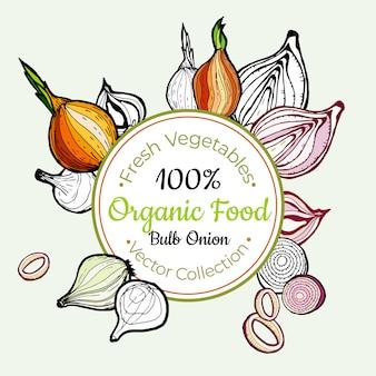 Cebolla verdura comestibles etiqueta vintage