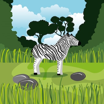 Cebra salvaje en la escena de la selva