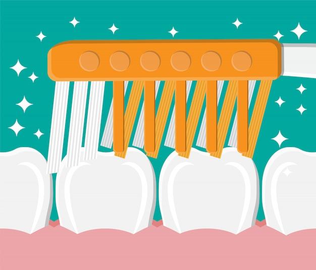 El cepillo de dientes limpia los dientes. lavando los dientes.