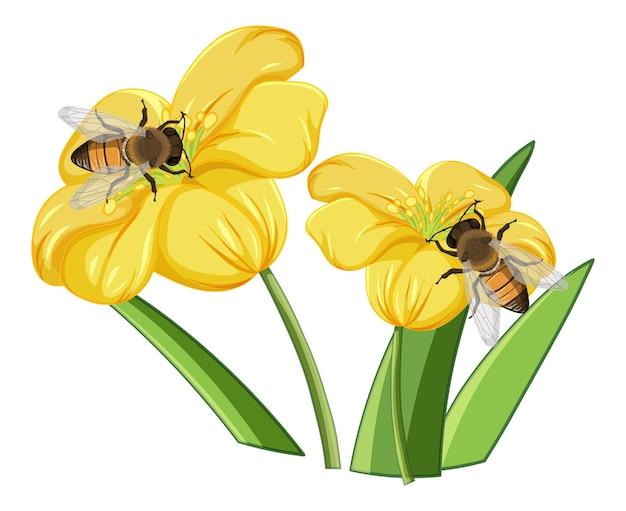Cerca de abeja en las flores