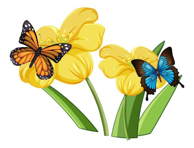 Cerca de mariposa sobre las flores