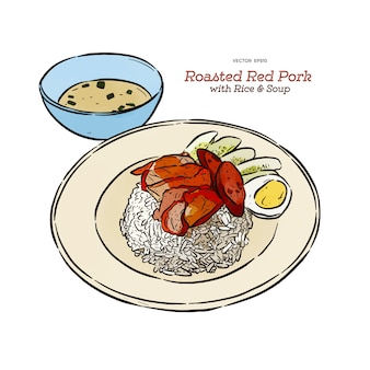 Cerdo rojo asado en el arroz con la sopa, vector del bosquejo del drenaje de la mano. comida tailandesa