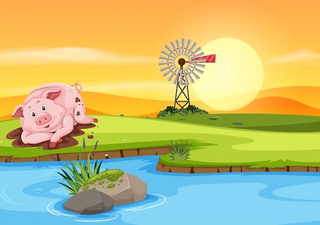 Cerdo en la tierra