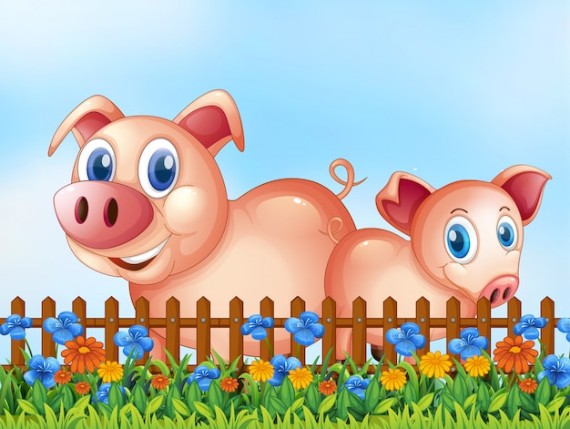 Cerdos en escena al aire libre