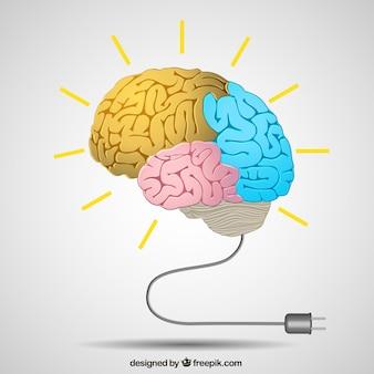 Cerebro creativo en estilo colorido