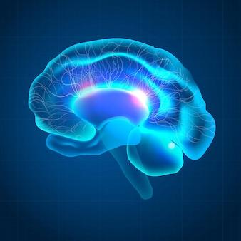 Cerebro para la tecnología médica del cuidado de la salud mental