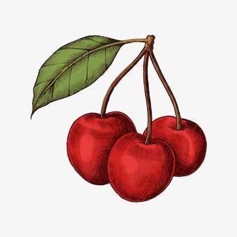 Cerezas maduras frescas rojas
