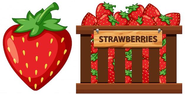 Cesta llena de fresas sobre fondo blanco.