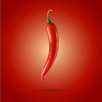 Chile rojo. 3d realista - aislado en fondo rojo