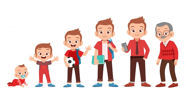 Ciclo de vida de crecimiento masculino