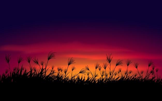 Cielo del atardecer con fondo de silueta de hierba
