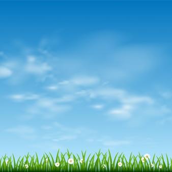 Cielo azul soleado y borde de hierba verde
