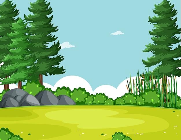 Cielo en blanco en la escena del parque natural con árbol