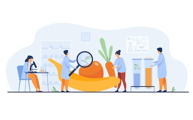 Científicos en biología que investigan las frutas. personas que cultivan plantas en el laboratorio. ilustración de vector de alimentos transgénicos, agricultura, concepto de ciencia