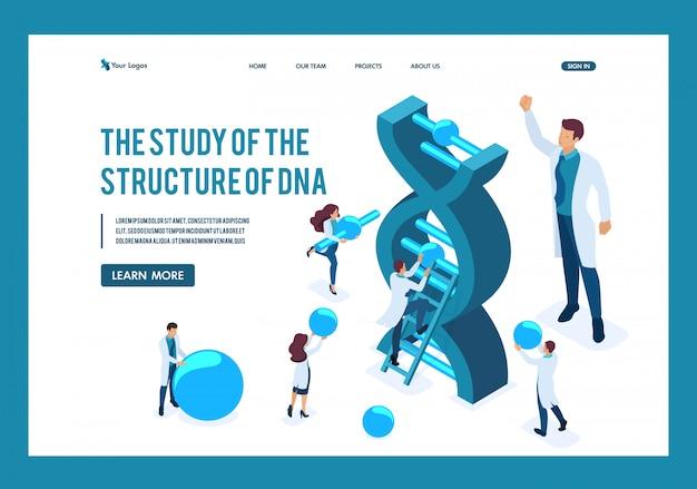 Los científicos isométricos están investigando la estructura del adn, haciendo experimentos página de destino