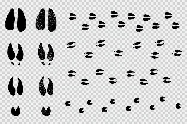 Ciervos y alces huellas de huellas de animales silueta negra en un fondo transparente.