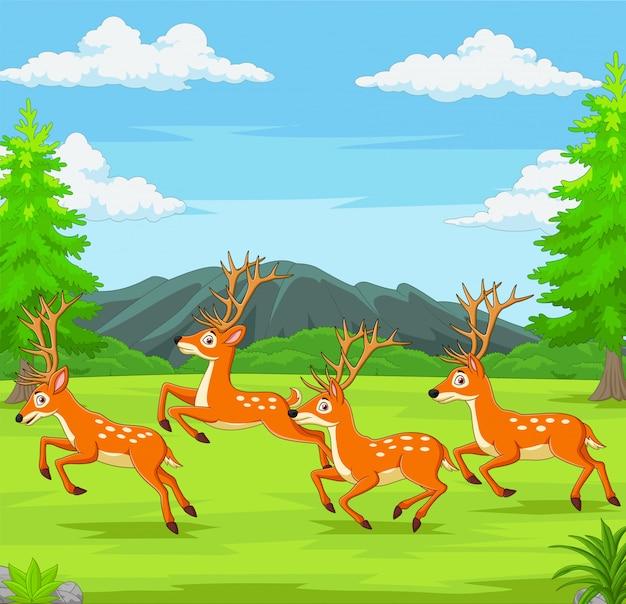 Ciervos de dibujos animados corriendo en el bosque