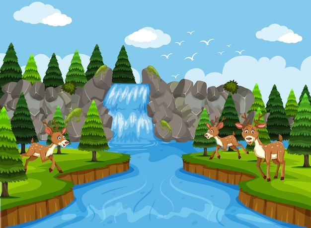 Ciervos en escena de cascada y bosque