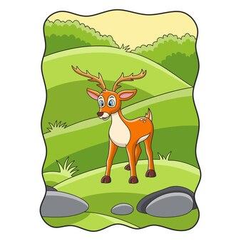 Ciervos de ilustración de dibujos animados están buscando comida en el prado en medio del bosque