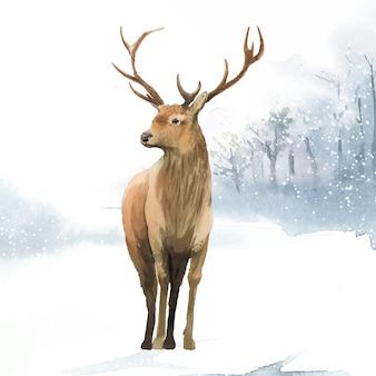 Ciervos machos pintados por acuarela vector