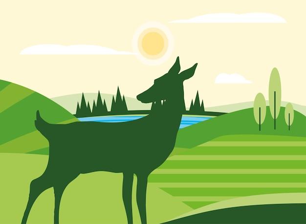 Ciervos de silueta en pradera