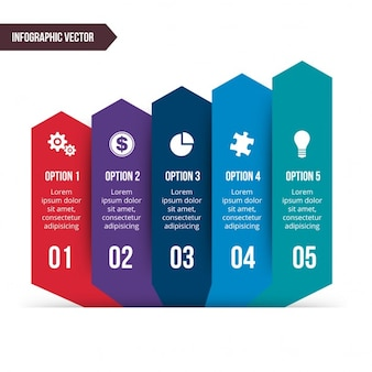 Cinco opciones con iconos para infografías