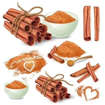 Cinnamon, palos, y, polvo, vector, colección