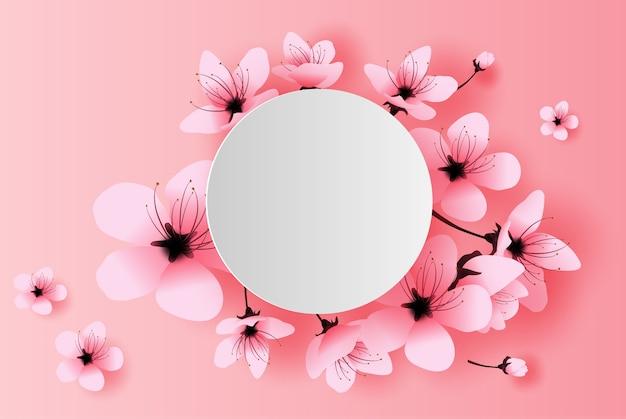 Círculo blanco primavera temporada concepto de flor de cerezo