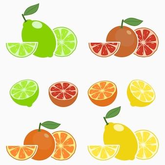 Cítricos, naranja, lima, limón, pomelo conjunto de frutas enteras con la mitad de la rodaja y la hoja vector