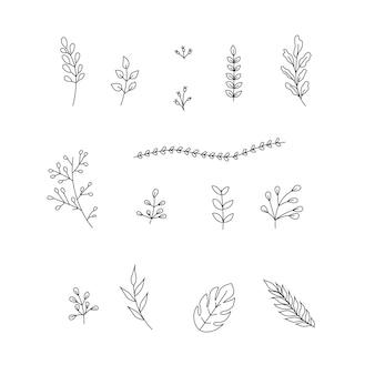 Clipart botánico de hojas 15 imágenes prediseñadas de ramas de hojas dibujadas a mano. ilustración vectorial