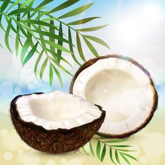 Coco realista, dos mitades de coco y hojas de palma
