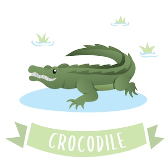 Un cocodrilo feliz verde