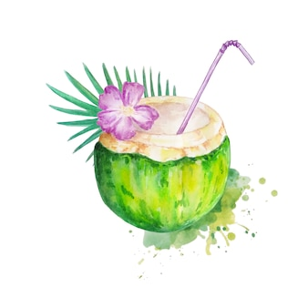 Cóctel de coco verde acuarela