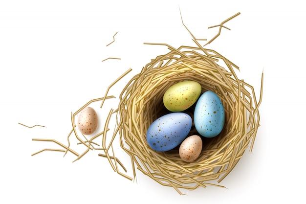 Codornices, huevos de gallina en el nido para el diseño de vacaciones de pascua