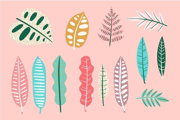 Colección abstracta de hojas tropicales
