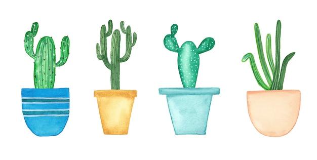 Colección de acuarela con cactus y suculentas.