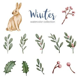Colección de acuarela de invierno con hojas, bayas y conejo, acuarela de invierno