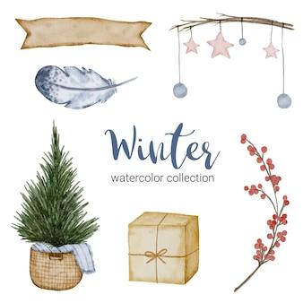 Colección de acuarela de invierno con ramas, hojas y flores