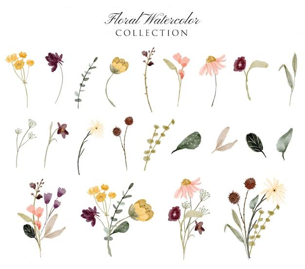 Colección de acuarela de jardín floral