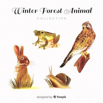 Colección adorable de animales de invierno en acuarela