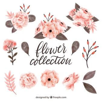 Colección adorable de elementos florales en acuarela
