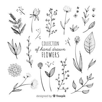 Colección adorable de flores dibujadas a mano